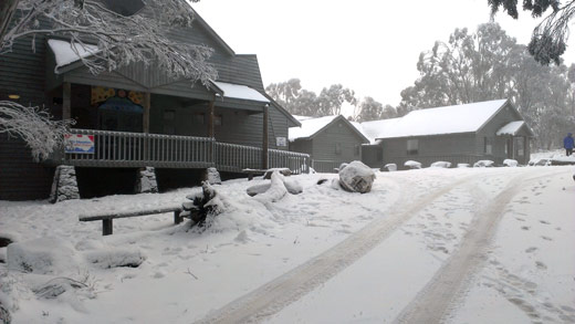 Snow. This morning at Alpine School